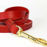 Classic Leather Clip Lead_Red [1].jpg