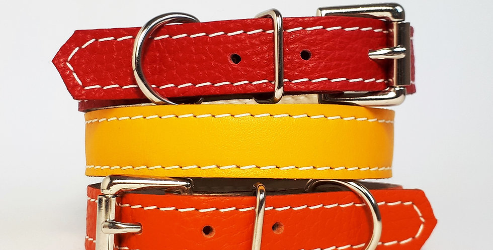Soft Leather Buckle Collars:  'Dazzling Brights'
