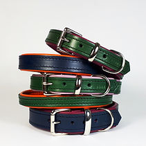 Padded Buckle Collar_Urban Vogue_Group [