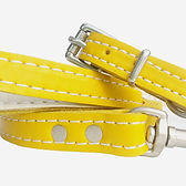 Soft%20Leather%20Puppy%20Set_Yellow%20%5