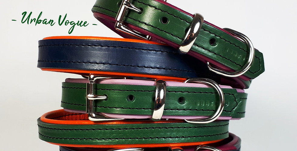Padded Leather Buckle Collars:  'Urban Vogue'