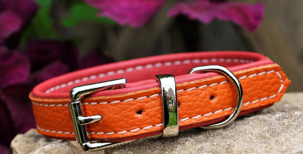 Double Softee Padded Collar: Orange on Red