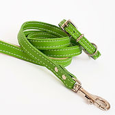 Soft Leather Puppy Set_Lime Green [1].jp