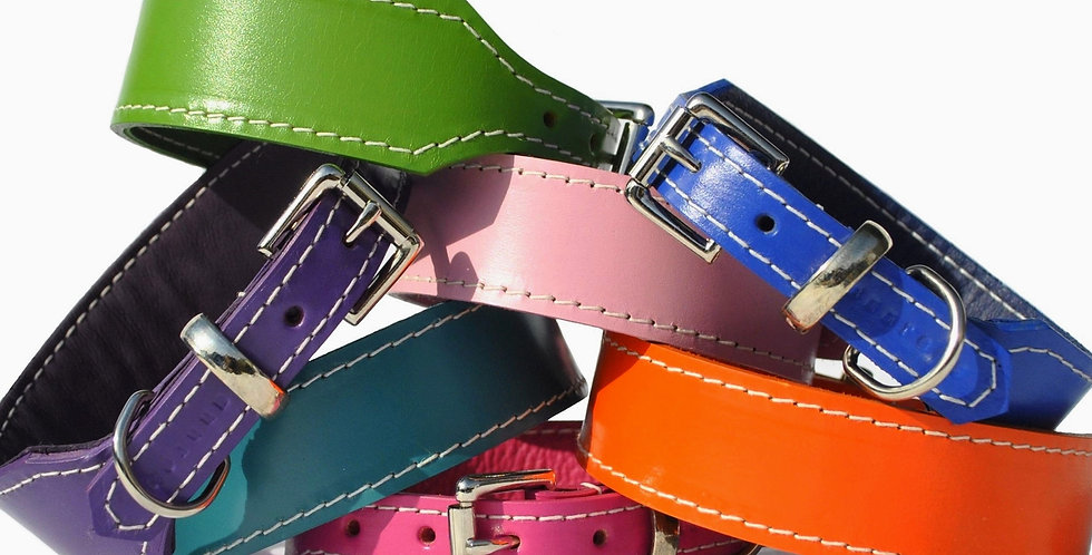 Classic Leather Hound Buckle Collars: Brights