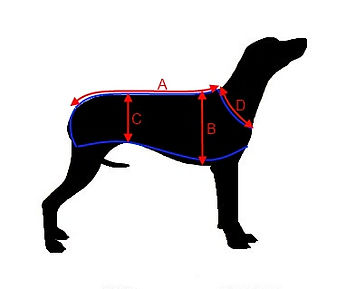 Hound Shaped Measurements.jpg