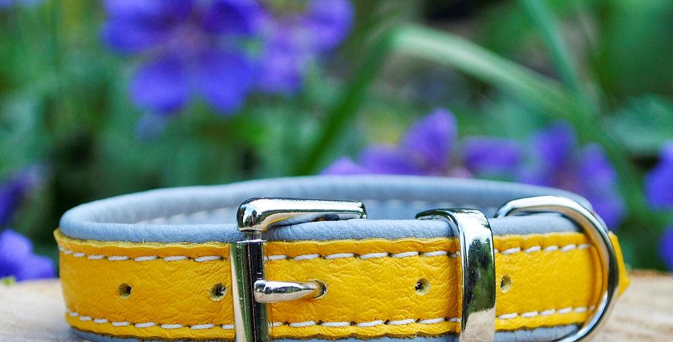 Double Softee Padded Collar: Yellow on Grey
