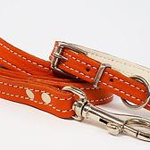 Soft Leather Puppy Set_Orange [3].jpg