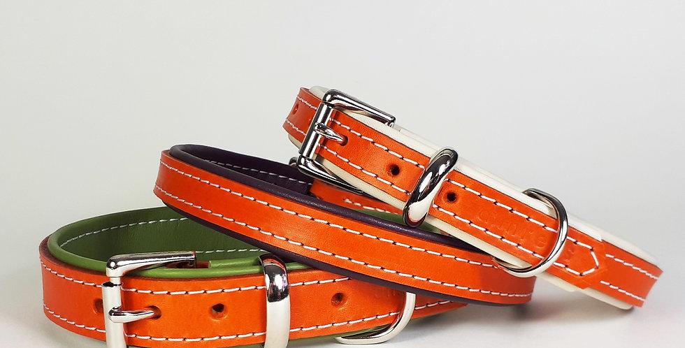 Padded Leather Buckle Collars:  'Glorious Orange'