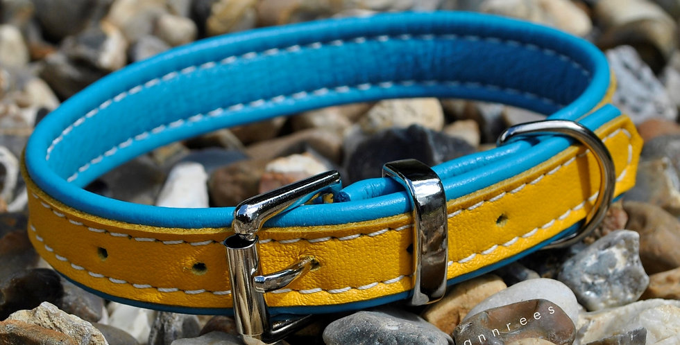 Double Softee Padded Collar: Yellow on Turquoise