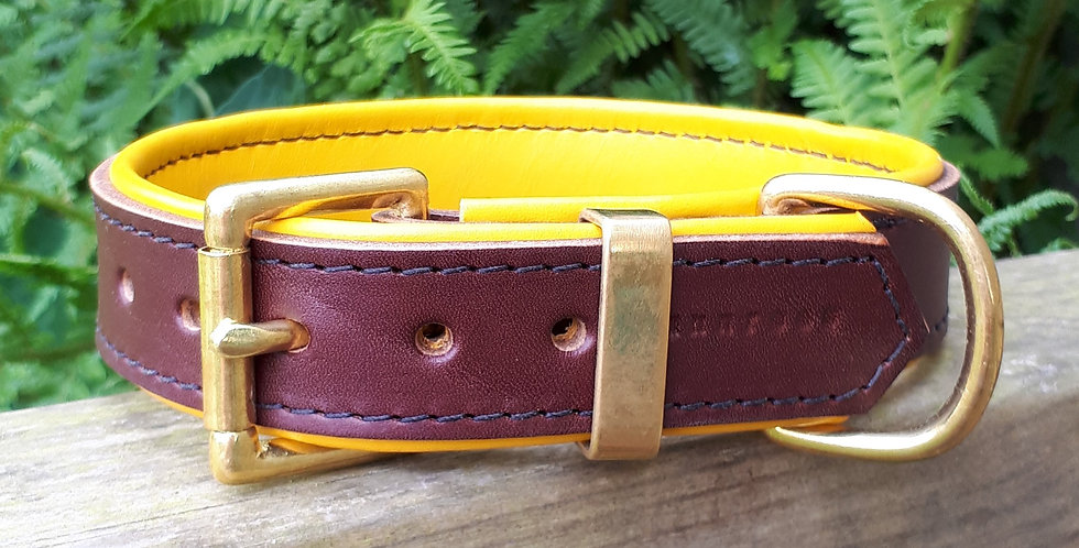 Padded Leather Buckle Collar: Chestnut brown on Yellow