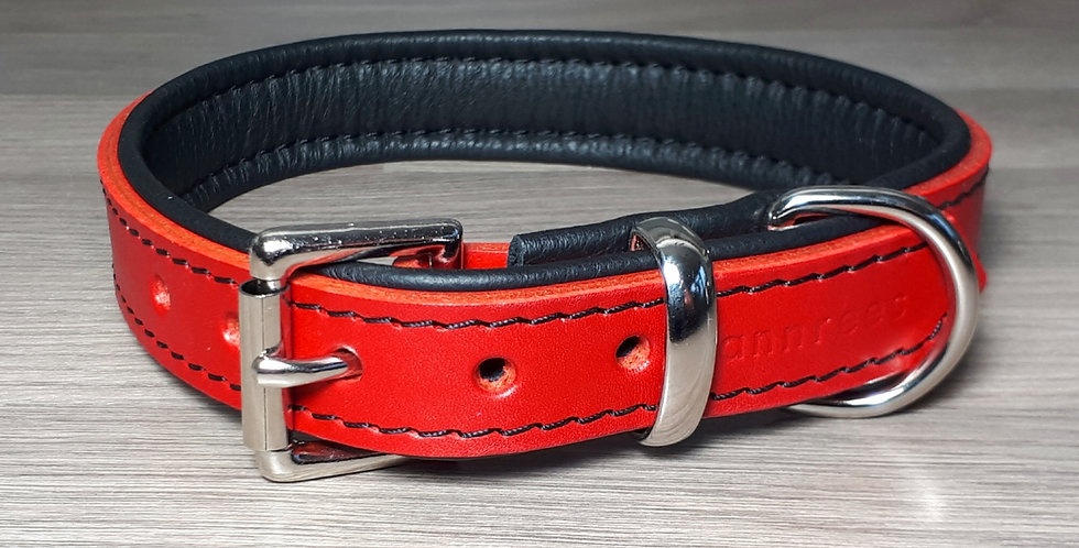 Padded Buckle Collar: Red on Black 15/16 inch neck
