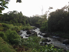 A River in Costa Rica