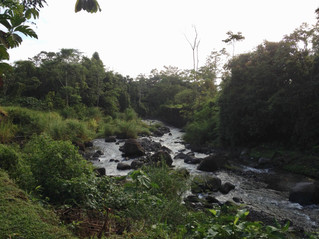A River in Costa Rica