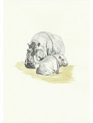 Mother and baby Hippo £45