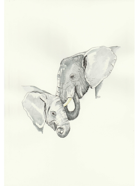 Mother and baby Elephant £45
