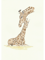 Mother and baby Giraffe £45