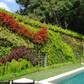 Jardim vertical: 4 dicas para você cultivar em casa
