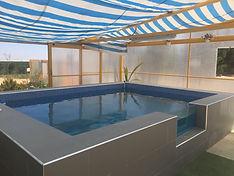 Piscina climatizada hidroterapia perros