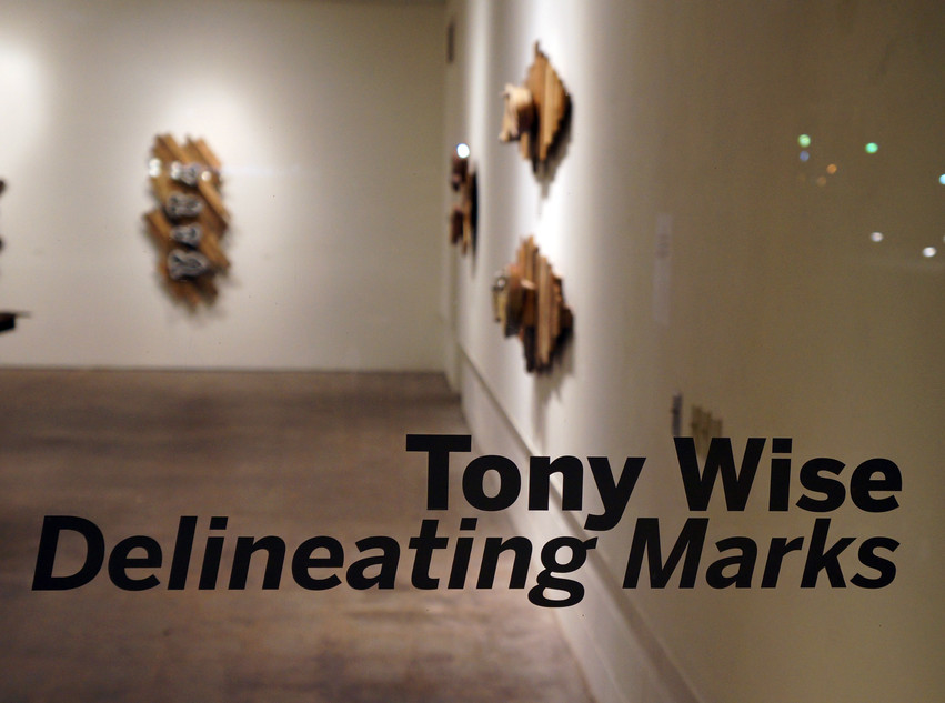 Tony Wise - Delineating Marks