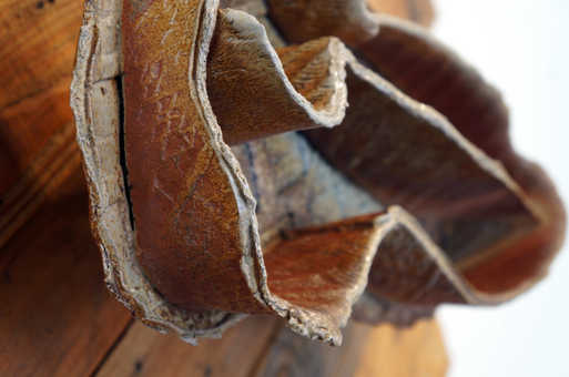 Alterations in Routine - Detail