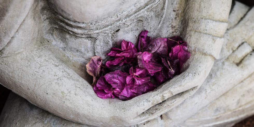 Meditation at Cedar Sanctuary, Jan 14