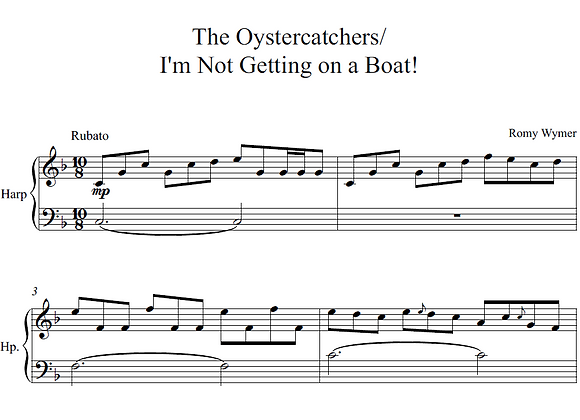 The Oystercatchers/I'm Not Getting on a Boat!