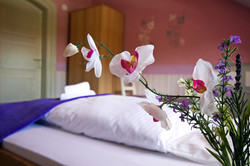 Hotel924-Celle283