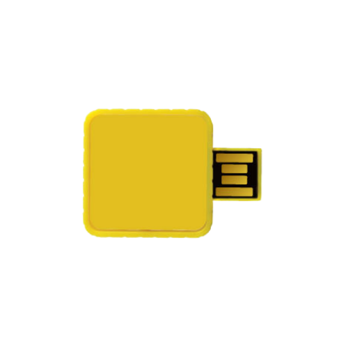 Branded USB Sticks