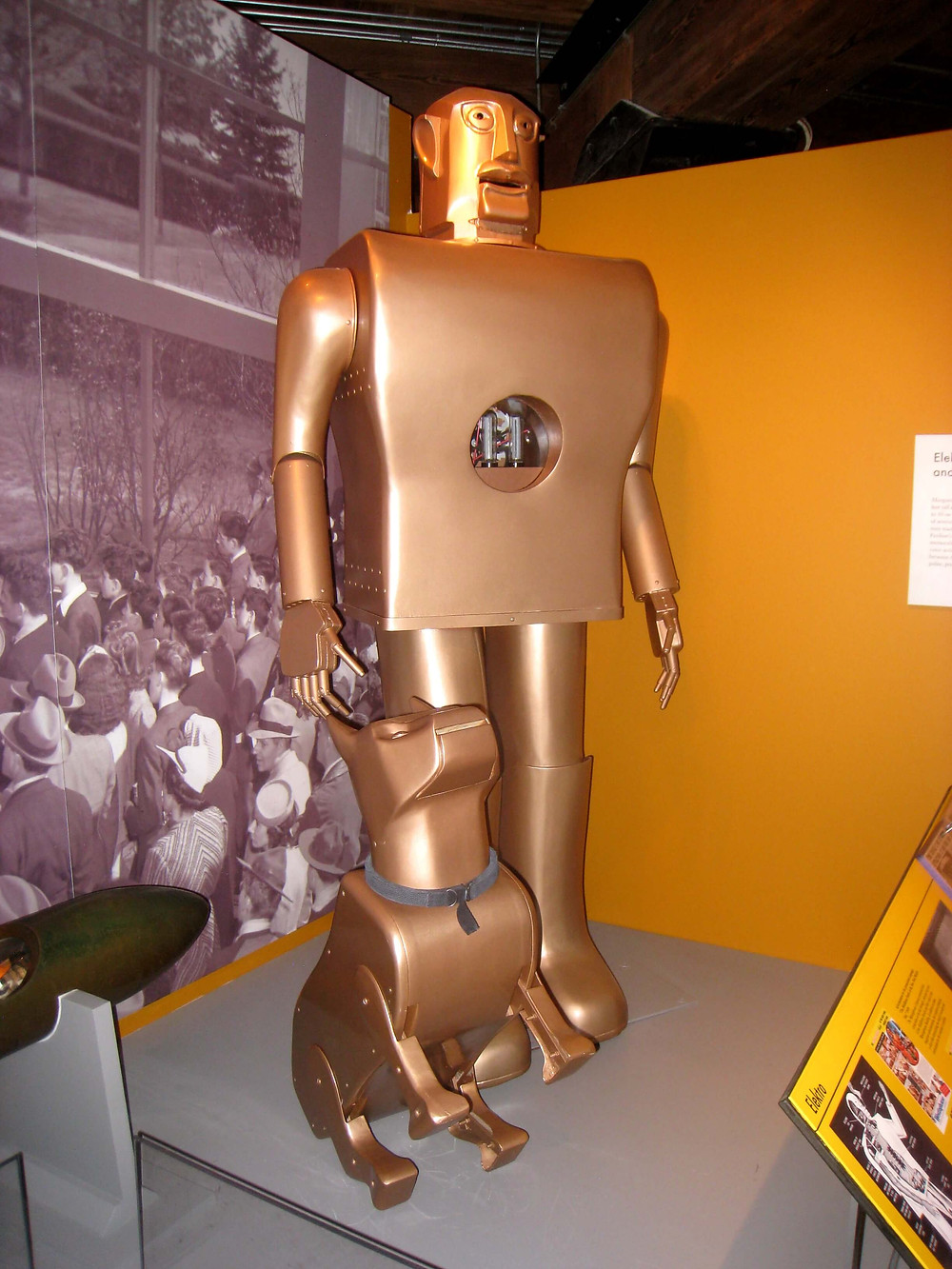 This image of the second humanoid robot