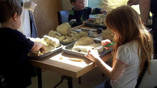 Kids dig fossil and find shells