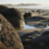 Scenic Moeraki Boulders