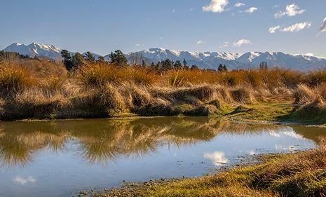 Duntroon Wetlands 6 2.jpg