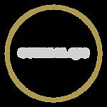 bullets EXCI_COEZIMA Q10.png