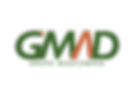 LOGO_OFICIAL_GMAD.png
