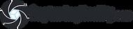 LogoAndCapturingRealityCom2600x575.png