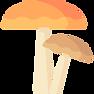 mushrooms%20(1)_edited.png