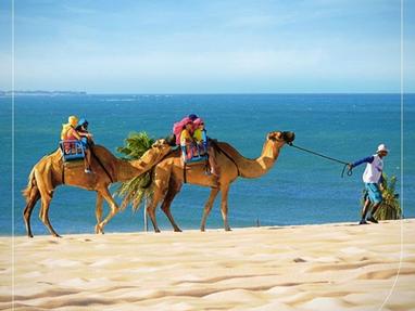 guia de turismo em natal | guia em natal