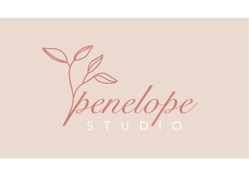 PENELOPE_Studio