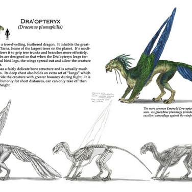 Dra'Opteryx