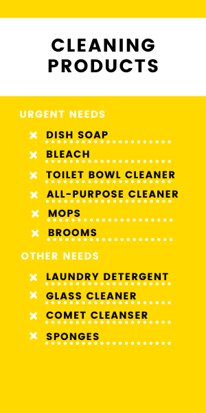 cleaning products.png