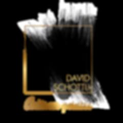 logo-David-Shottli (1).png
