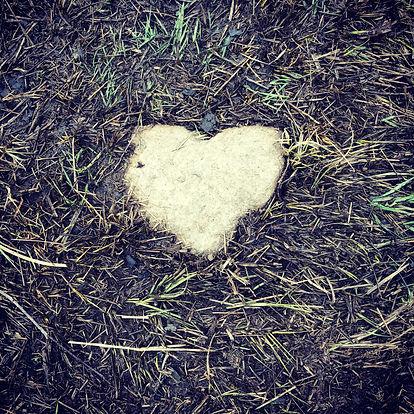 Hjerte av stein.JPG