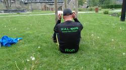 WAL sports