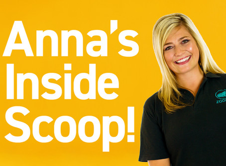 The Inside Scoop with Anna French