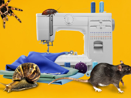 ZooLab's Quick Guide to Sustainable Fashion