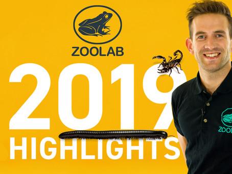 ZooLab Corporate 2019 Round Up