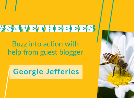 Buzz into Action! Help Save the Bees.