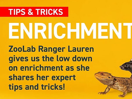 Tips and Tricks - Enrichment