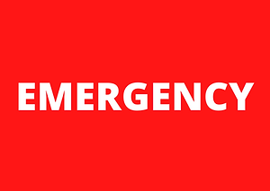 emergency sign.png