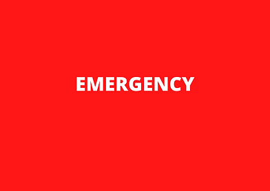 emergency sign2.png